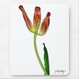 """Tulip"" by J. Maya Luz Mouse Pad"