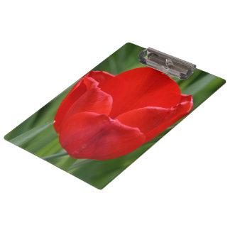 Tulip Clipboard
