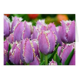 Tulip cummins greeting card