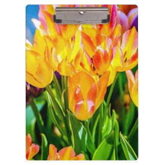 Tulip Flowers - Flourish Clipboard
