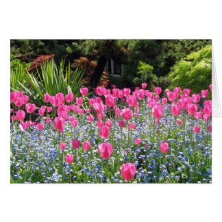 Tulip Friendship Note Card