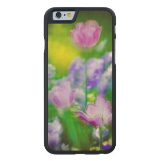Tulip garden, Giverny, France Carved Maple iPhone 6 Case