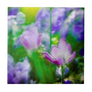 Tulip garden, Giverny, France Tile