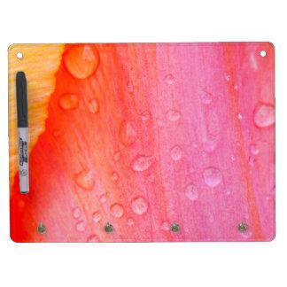 Tulip Key Holder & Dry Erase Board