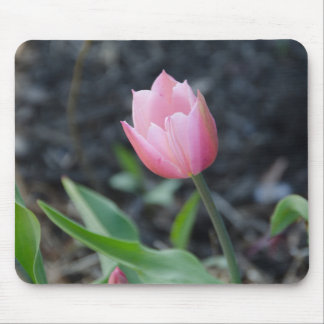 Tulip Mouse Pad