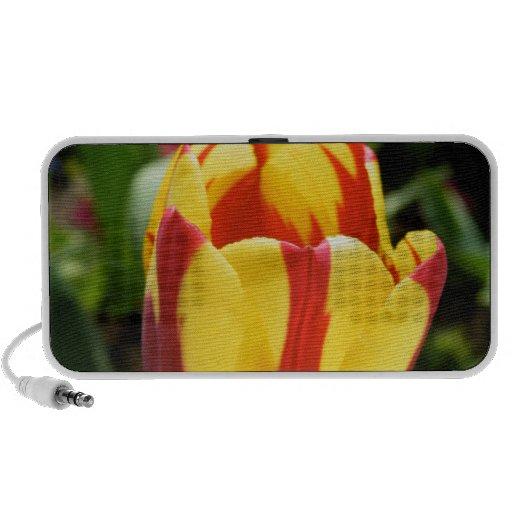 Tulip OrigAudio Doodle Speaker