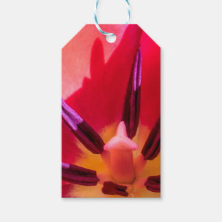 Tulip Porn Pack Of Gift Tags