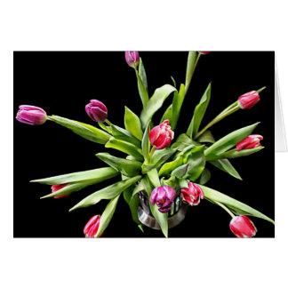 Tulip Postcards Greetings Cards.