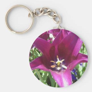tulip,purple star tulip basic round button keychain