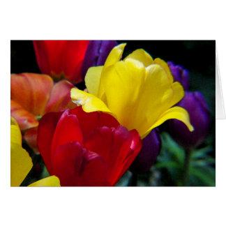Tulip Rainbow Card