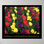 Tulip Rainbow Print