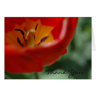 Tulip thank you, by H.A.S. Arts Card