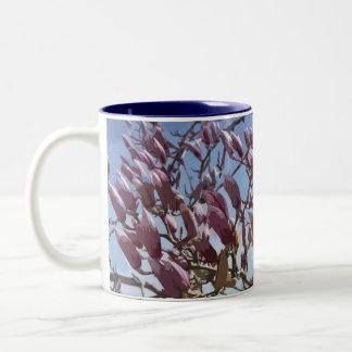 Tulip Tree / Saucer Magnolia Blossoms Two-Tone Coffee Mug