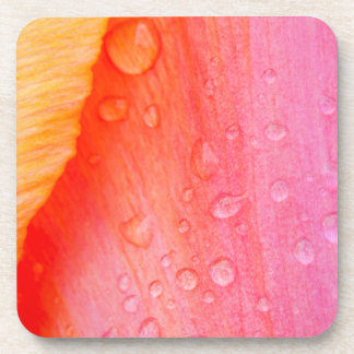 Tulip with Water Droplets Hard Plastic Coasters