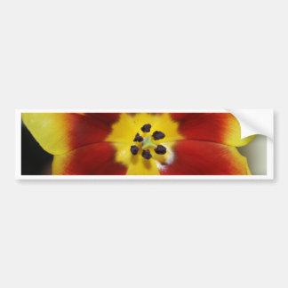Tulipe Autocollant De Voiture