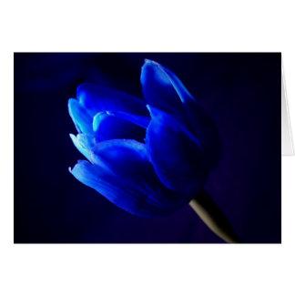 Tulipe bleue carte de vœux