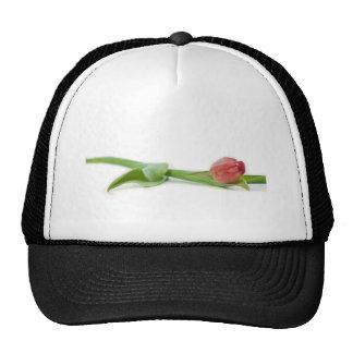 tulipe de ressort casquette de camionneur