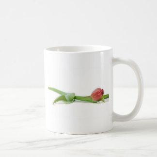 tulipe de ressort mug à café