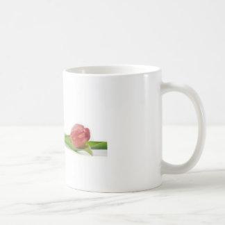 tulipe de ressort tasses à café