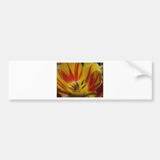 tulipe, jaune et rouge autocollant de voiture