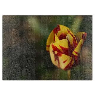 Tulipe jaune et rouge planche à trancher