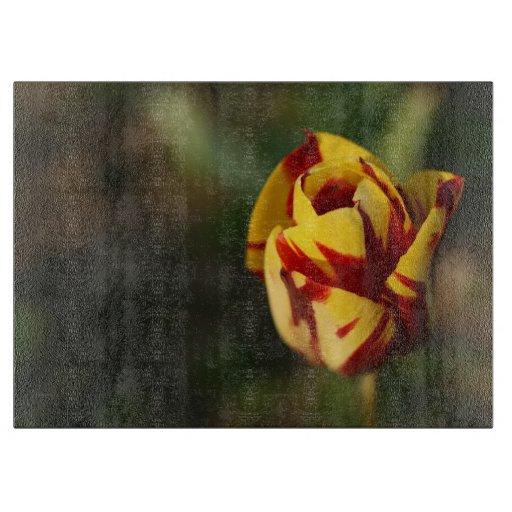 Tulipe jaune et rouge planches à trancher