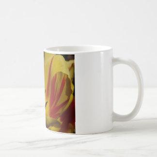 tulipe, jaune et rouge tasse