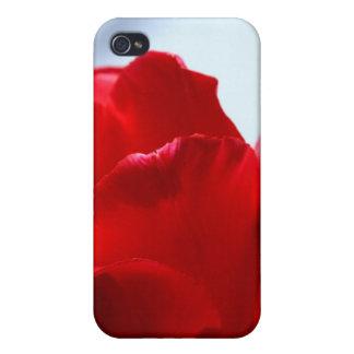 Tulipe rouge coque iPhone 4