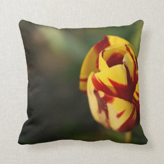 Tulipe rouge et jaune coussin