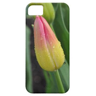 Tulipe rouge et jaune simple étuis iPhone 5