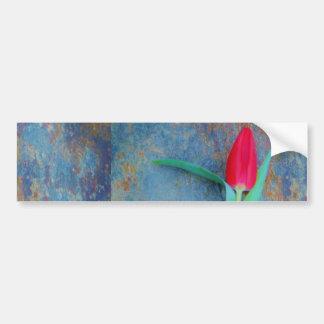 Tulipe rouge sur l'ardoise de gris bleu autocollant de voiture