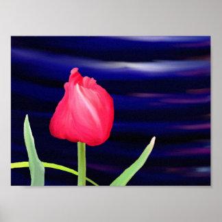 Tulipe sur l'affiche bleue de pot poster