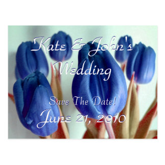 Tulipes bleues cartes postales