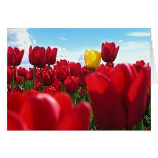 Tulipes Carte De Correspondance