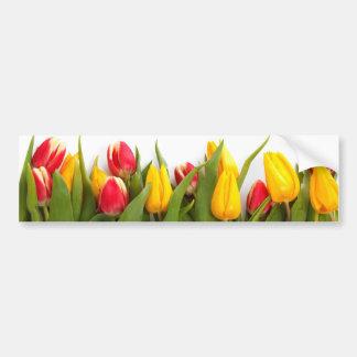 Tulipes colorées autocollant de voiture