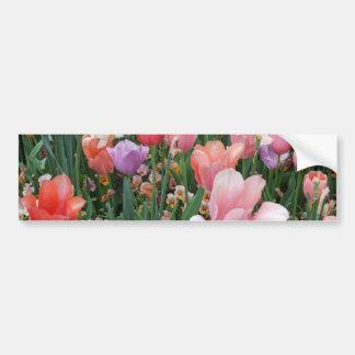 Tulipes colorées multi autocollant de voiture