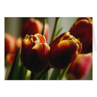 Tulipes de bonbons au maïs carte de vœux