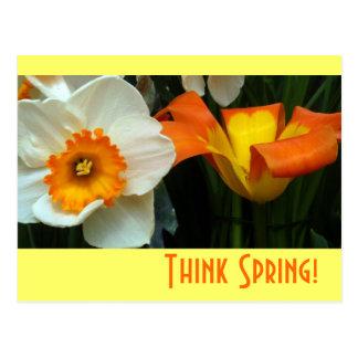 Tulipes de Jonquil Carte Postale