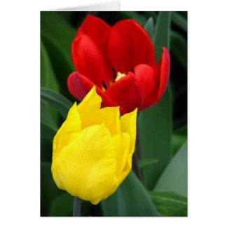 Tulipes de ressort carte de vœux