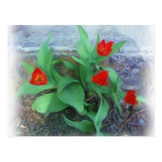Tulipes de ressort cartes postales