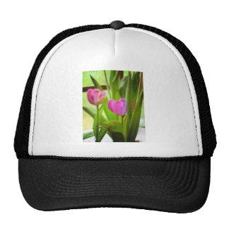Tulipes de ressort casquette