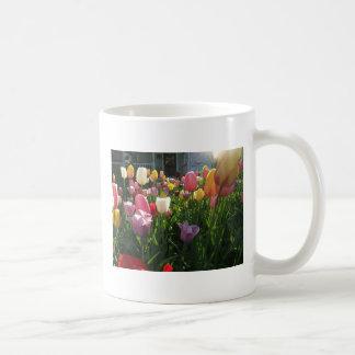 Tulipes de ressort mug blanc