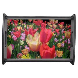 Tulipes de ressort plateau