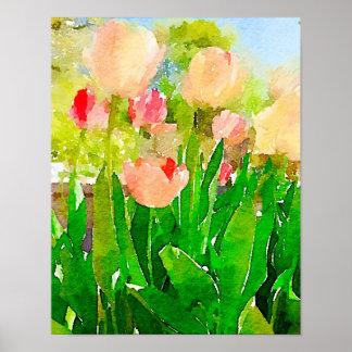 Tulipes de ressort poster