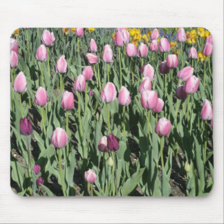 tulipes de ressort tapis de souris
