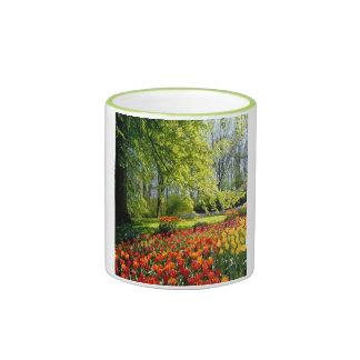 Tulipes de ressort tasse