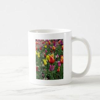 Tulipes de ressort mug