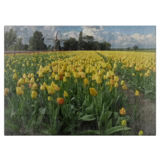 Tulipes et moulin à vent jaunes dans un domaine Ho
