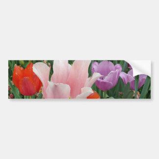 Tulipes et pensées 2 autocollant de voiture