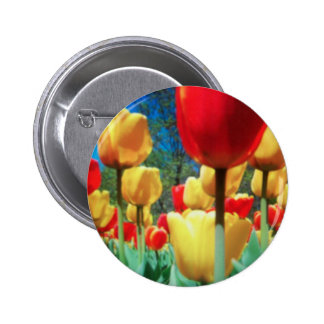 tulipes jaunes et rouges badges avec agrafe